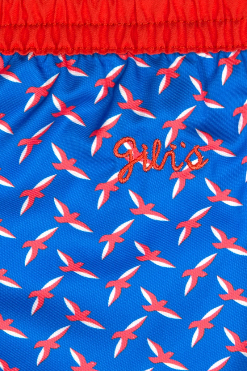Focus swimsuit for boys blue seagulls